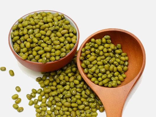 ماش بذر هندی
